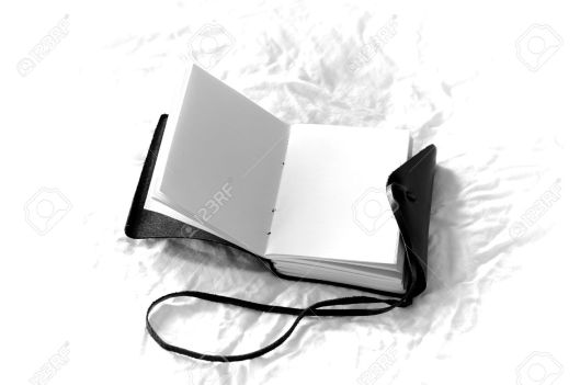 romantic black and white blank journal